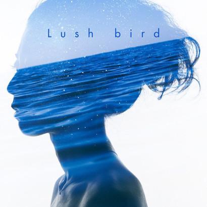 LUSH NOV 2015 BIRD 001